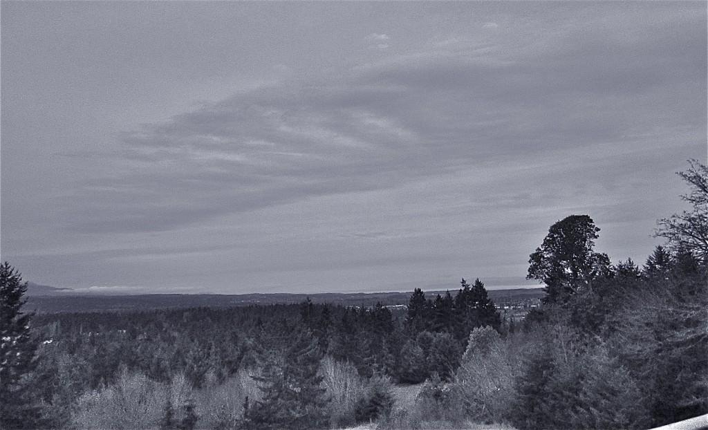 march11-grey2
