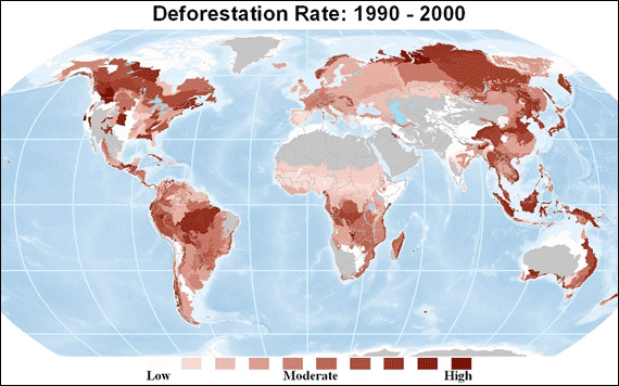 deforestation-rates